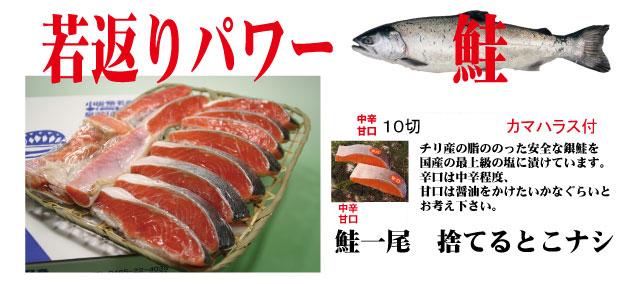 銀鮭 切り身